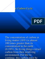 carbon cycle.ppt