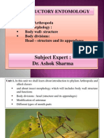 1_INTRODUCTORY_ENTOMOLOGY.pptx