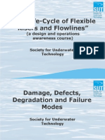 SUT Flexibles - 6 Damage, Defects, Degradation, Failure Modes - Selected Case Studies - March 2011 update - compressed.pdf