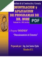 Guia Programa DOMINIOS