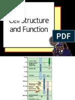 1CellStructure.pdf