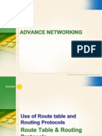 Routing Protocols CT