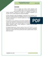 PESO SUELTO Y VARILLADO.docx