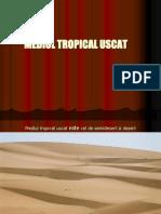 MEDIUL TROPICAL USCAT DE DESERT.ppt