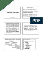 Catedra de Fisiologia - Sistema Nervioso
