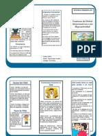 Triptico Tdah PDF
