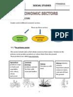 Economic Sector Dossier)