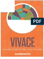Sonokinetic Vivace 1.1 - reference manual