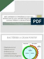 2013 DUATB Grenoble R Et Epidemio Gram