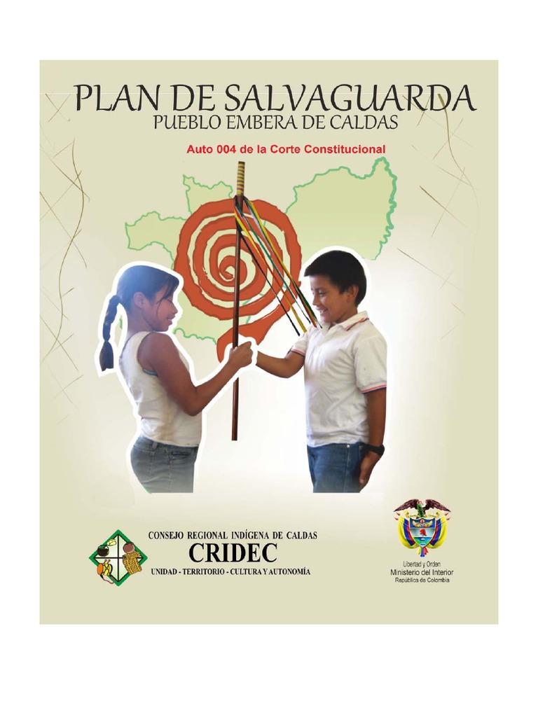 facd08a04e3a PLAN DE SALVAGUARDA PUEBLO EMBERA CALDAS