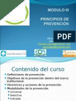 3 Principios de Prevencion