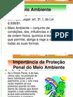 Direito Penal Ambiental Juizado