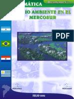 Medio Ambiente MERCOSUR