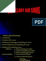 Maxillary Air Sinus Oral Surgery