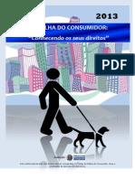 Cartilha Consumidor 2013 definitiva