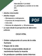 Presentacion 1Vejez