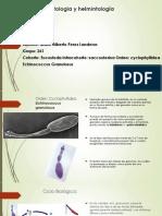Clase Helminotologia