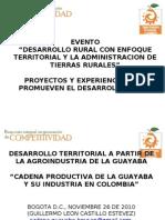 Cadena Productiva de La Guayaba y Su Industria