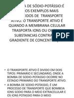 A BOMBA DE SÓDIO-POTÁSSIO