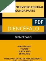 P.POINT DIENCÉFALO - SISTEMA NERVIOSO CENTRAL 2ªPARTE