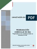 Modulo Programacon Curricular en Eba (1)