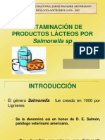 SALMONELLA LACTEOS-CACEDA.ppt
