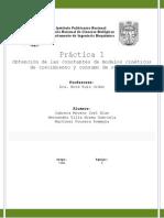 P_1 modelos cinéticos
