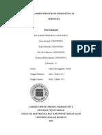 laporan semisolida.doc