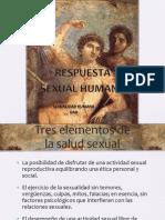 Respuesta Sexualhumana