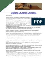 3991505-Despre-Liturghia-Ortodoxa.pdf