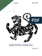 Karate fino a cintura nera.pdf