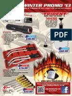 11 2013 FIN Promo.pdf