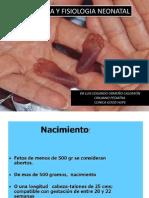 anatomiayfisiologaneonatalenfermeria-110416131114-phpapp02