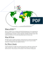 What is WTO.docx