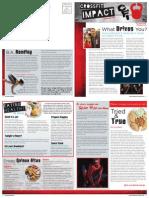 CrossFit Impact Newsletter November 2013