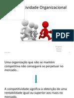 Competitividade Organizacional T.D.G.....