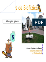 cursbf5rom.pdf