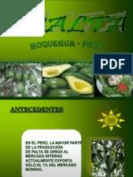 paltas-091030115338-phpapp02