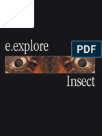 50127751-Insect