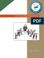Tema v - Cultura Organizacional