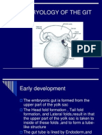 Embryology of the Gut