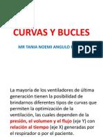 Curvas y Buclestania