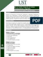 Diplomado en Gestión Integrada de Calidad Medioambiente y Seguridad 2013-VIÑA
