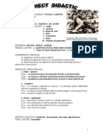 Proiect didactic educatie fizica.doc