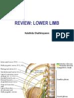 Reveiw_Lowerlimb_2013.pdf