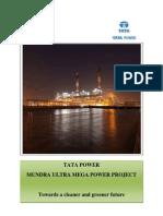 umpp-greener-future121015.pdf