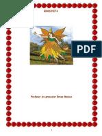 proiect_gradi[1]