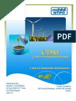 CDM-Clean Developement Mechanism by Rahul Agarwal.docx