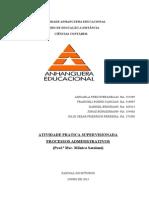 ATPS Processos Administrativos 2013 (4)