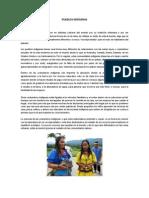 PUEBLOS INDÍGENAS.docx